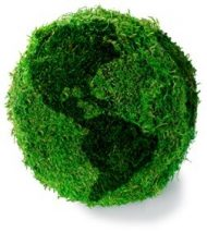 eco-friendly lawn care in Spring Hill