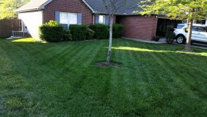 lawn mowing spring hill tn