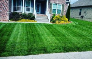 lawn mowing service spring hill tn