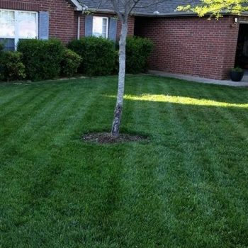 lawn care company spring hill tn